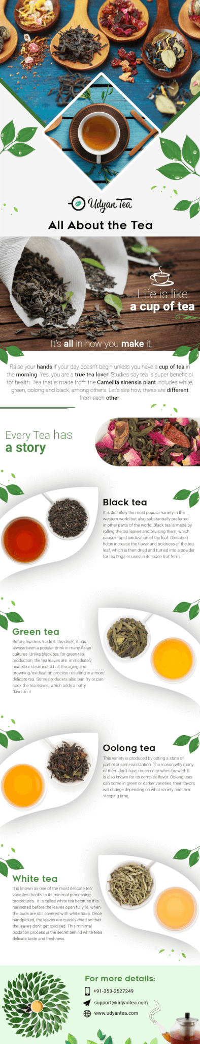A Guide to Know About Tea and its Flavours