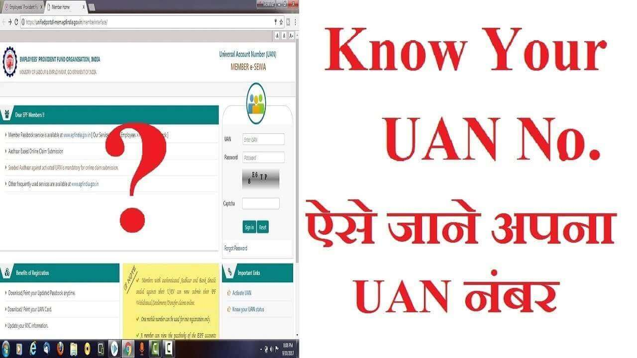 Getting your UAN: How to Activate UAN no. Step-By-Step Guide